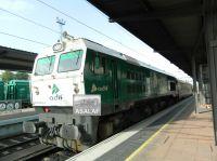 DSCN5955